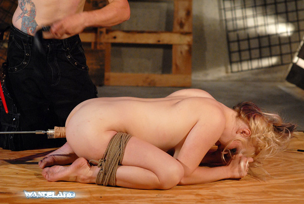 ... cropping, breast slapping, flogging, anal insertion, oral sex, ...