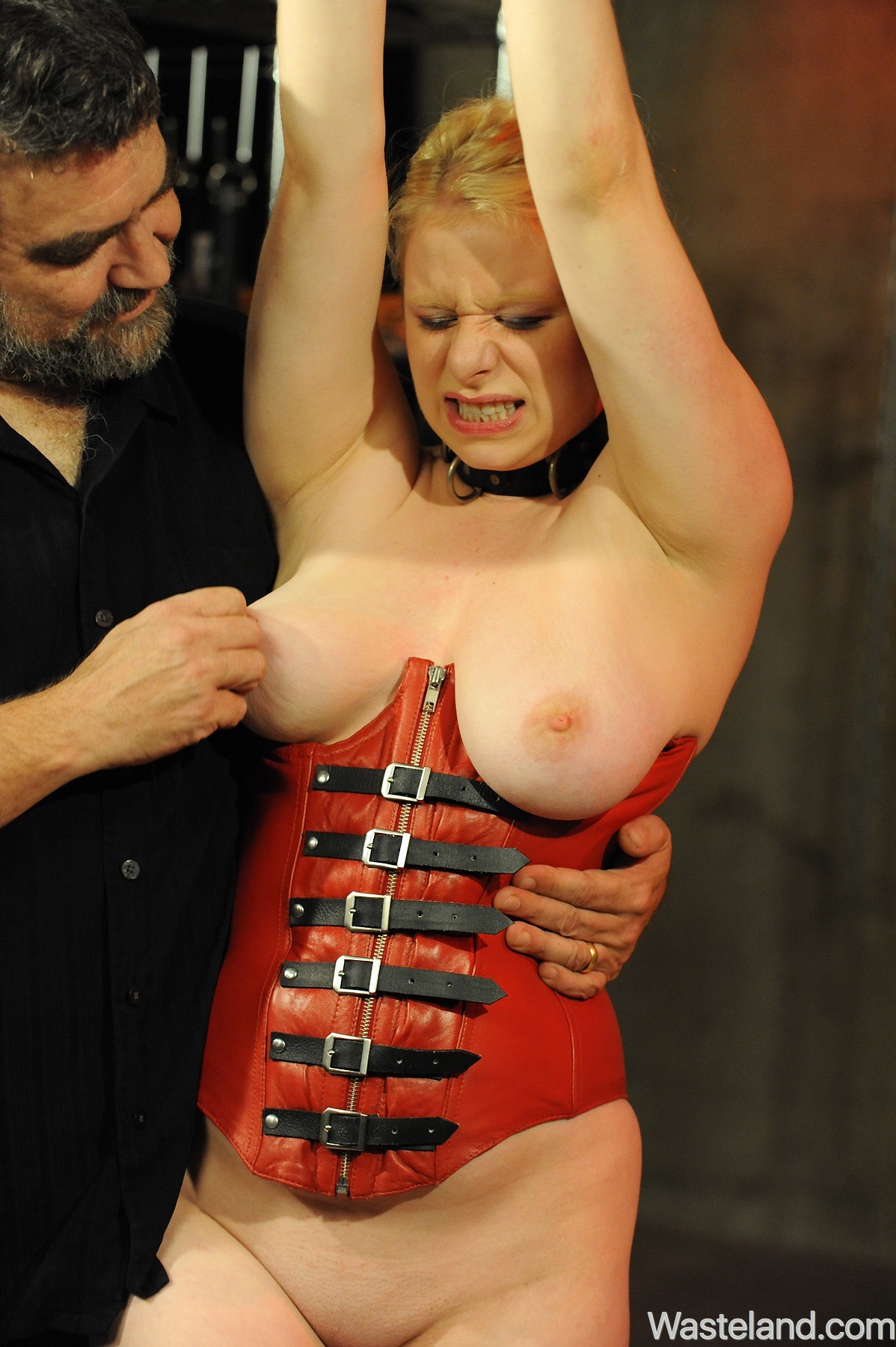 BDSM Sex Slave Training