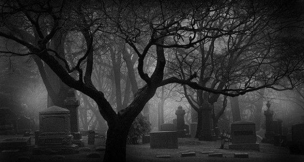 Creepy Halloween Original Wasteland Footage